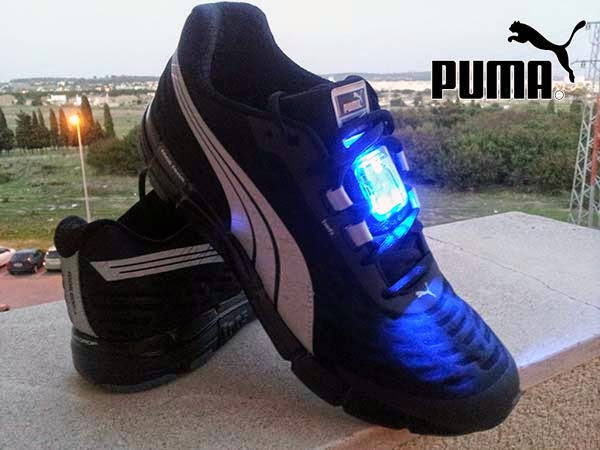 puma-nightcat